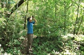 5 Amazonas Ecuador