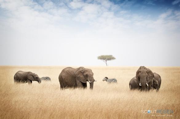 Tansania Luxus reisen