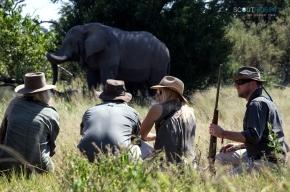 Private Safaris Botswana